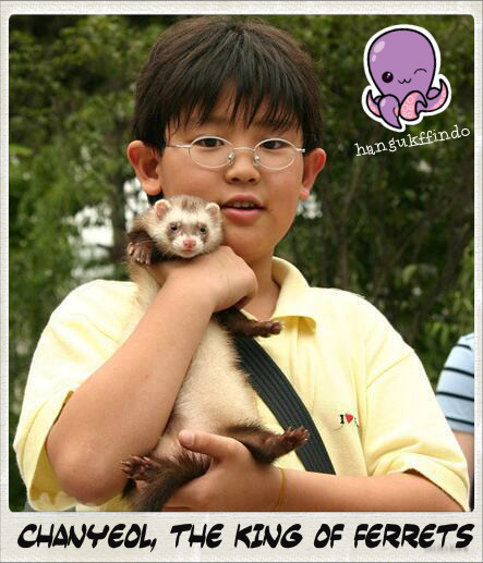 Chanyeol, the King of Ferret